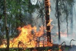 Forest fires threaten Kyiv region