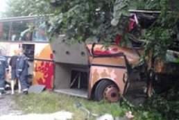 Eight killed in bus collision in Volyn