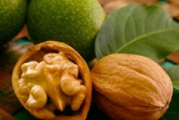 Turkey increase duties on Ukrainian walnuts