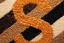Prysiazhniuk: Ukraine to make top three largest grain exporters this year