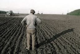 Yanukovych complains about the lack of motivation for farmers