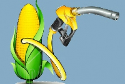 Ukraine intends to provide citizens with biofuel