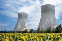 Cabinet amends nuclear fuel state program