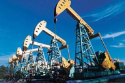 Government compensates losses in oil and gas fields development