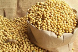 Ukrainian soybean, barley exports to China start in 2014