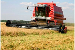 Ukraine exports record amount of grain
