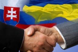 Ukraine, Slovakia to purify water basin of Transcarpathian region