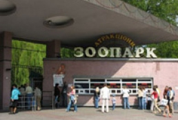 Holubchenko to offer Kyiv Zoo director to resign