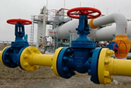 Ukraine imported gas worth $12 billion in 2013