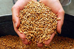 30 million tons of early crops to be harvested in 2014