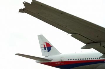 Порошенко выступает за привлечение ИКАО для расследования трагедии с малазийским самолетом