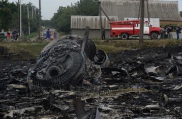 У Донецькій області виявили тіла 181 загиблого в авіакатастрофі