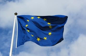 В ЕС пока не готовы делать политические выводы по авиакатастрофе малазийского лайнера