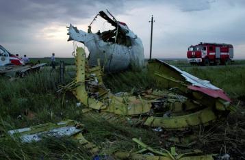 Еще семь тел найдены на месте падения самолета в Донецкой области