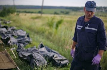 Україна готова передати розслідування трагедії «Боїнга» комісії на чолі з Нідерландами