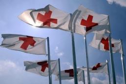 Организацию гуманитарной помощи Донбассу возьмет на себя Красный Крест