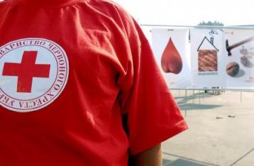 Красный Крест приступил к осмотру российского гуманитарного груза