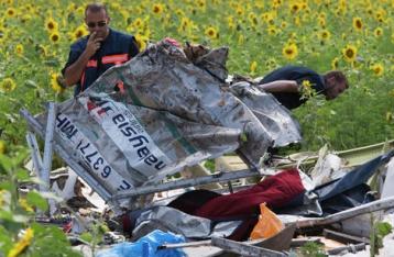 Предварительный отчет о катастрофе «Боинга» обещают к концу августа
