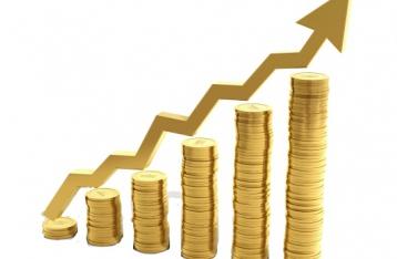 МЕРТ: Інфляція в Україні за підсумками 2014 року становитиме 19,5%
