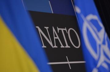 НАТО наблюдает снижение военной активности на Донбассе