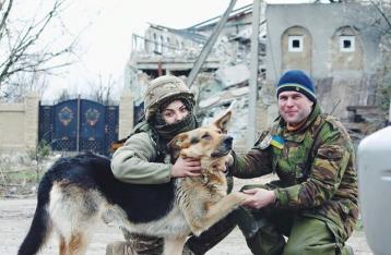 Животные на войне: четырехлапые приходят к бойцам за едой и предупреждают о взрывах