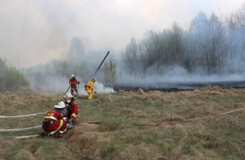 Пожар в Чернобыльской зоне. Причины и последствия