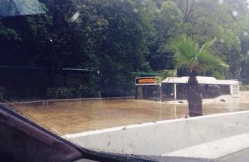 Ливень затопил несколько районов Сочи