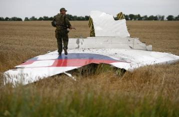 Порошенко: Виновные в катастрофе MH17 будут наказаны
