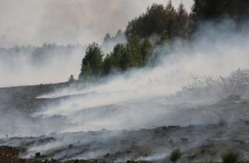 Из-за горящих торфяников содержание вредных веществ в воздухе Киева превысило норму