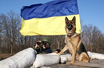 Госпогранслужба не контролирует более 400 километров границы с РФ