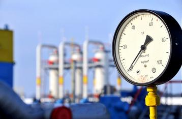 Коболев: В 2016 году Украина обойдется без российского газа