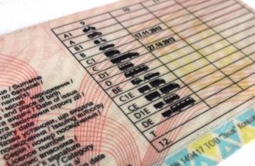 Италия признала водительские удостоверения Украины