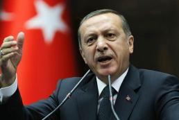 Эрдоган: Турция будет и дальше сбивать самолеты-нарушители