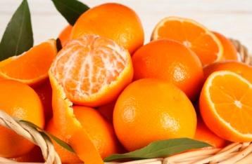 Благодаря России в Украине подешевеют цитрусовые и овощи