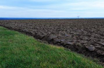 Яценюк предлагает продать 1 миллион гектаров государственной земли