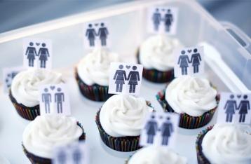 Кабмин планирует легализовать однополые браки