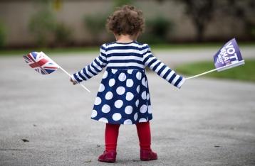 Петиция о повторном референдуме в Британии набрала более миллиона подписей