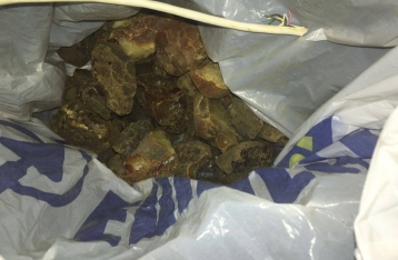 Аваков: В незаконной добыче янтаря подозревают 32 человека