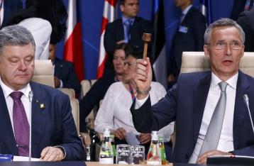 Страны НАТО одобрили комплексный план поддержки Украины