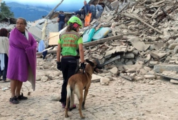 В Италии произошло мощное землетрясение, есть погибшие