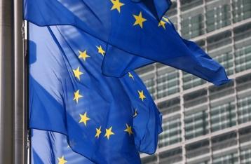 ЕС не будет мониторить выборы в Госдуму в Крыму