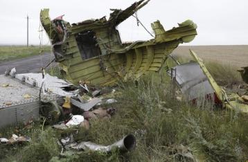 Следствие пока не признало Россию причастной к катастрофе «Боинга»