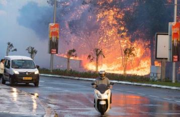 В Израиле бушуют лесные пожары, эвакуированы 50 тысяч человек