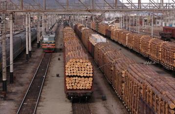 Евросоюз требует отмены моратория на экспорт леса-кругляка