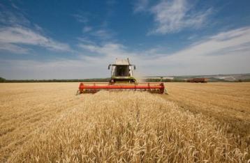 Гройсман: Земельную реформу нужно провести до 2020 года