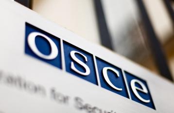Австрия будет через ОБСЕ добиваться смягчения санкций против РФ