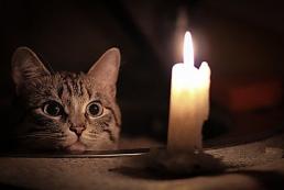 Украинцам обещают не отключать электричество до 20 марта