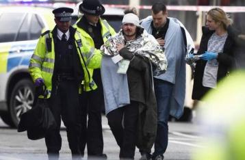 Полиция назвала инцидент возле британского парламента терактом