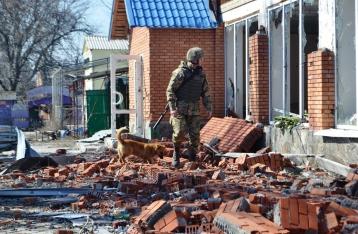 За сутки в зоне АТО 81 обстрел, ранены 6 военных