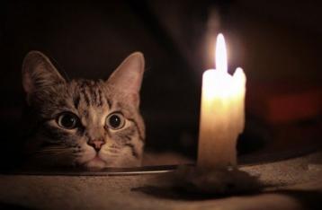 Без электричества остаются сотни населенных пунктов